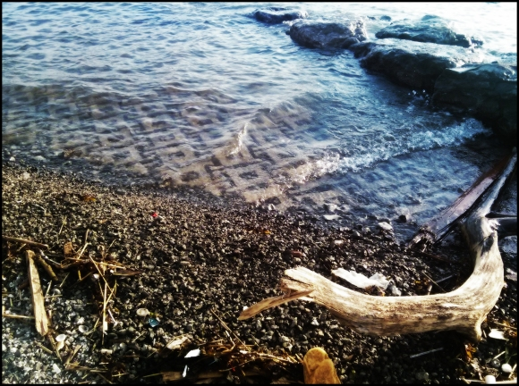 on_the_shore